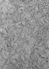 organmaser-1_zeichnung_40x30cm