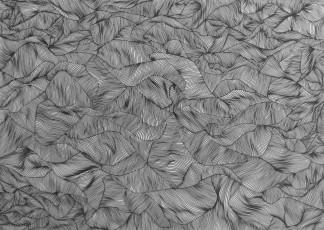 organmaser-2_zeichnung_30x40cm
