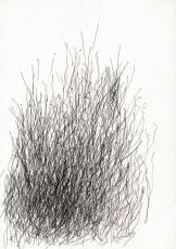 abstrich-1-20121-600x850
